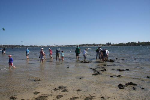 Naturalists at Point Walter