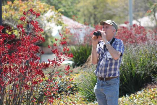 3. Mike Green bird watching in the Shire of Mundaring native garden Photo Rachel Green.JPG