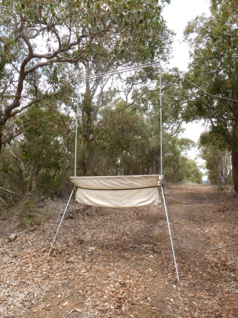 Harp Trap to capture microbats.JPG