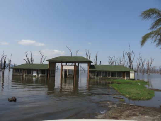 Flooded Park HQ .JPG